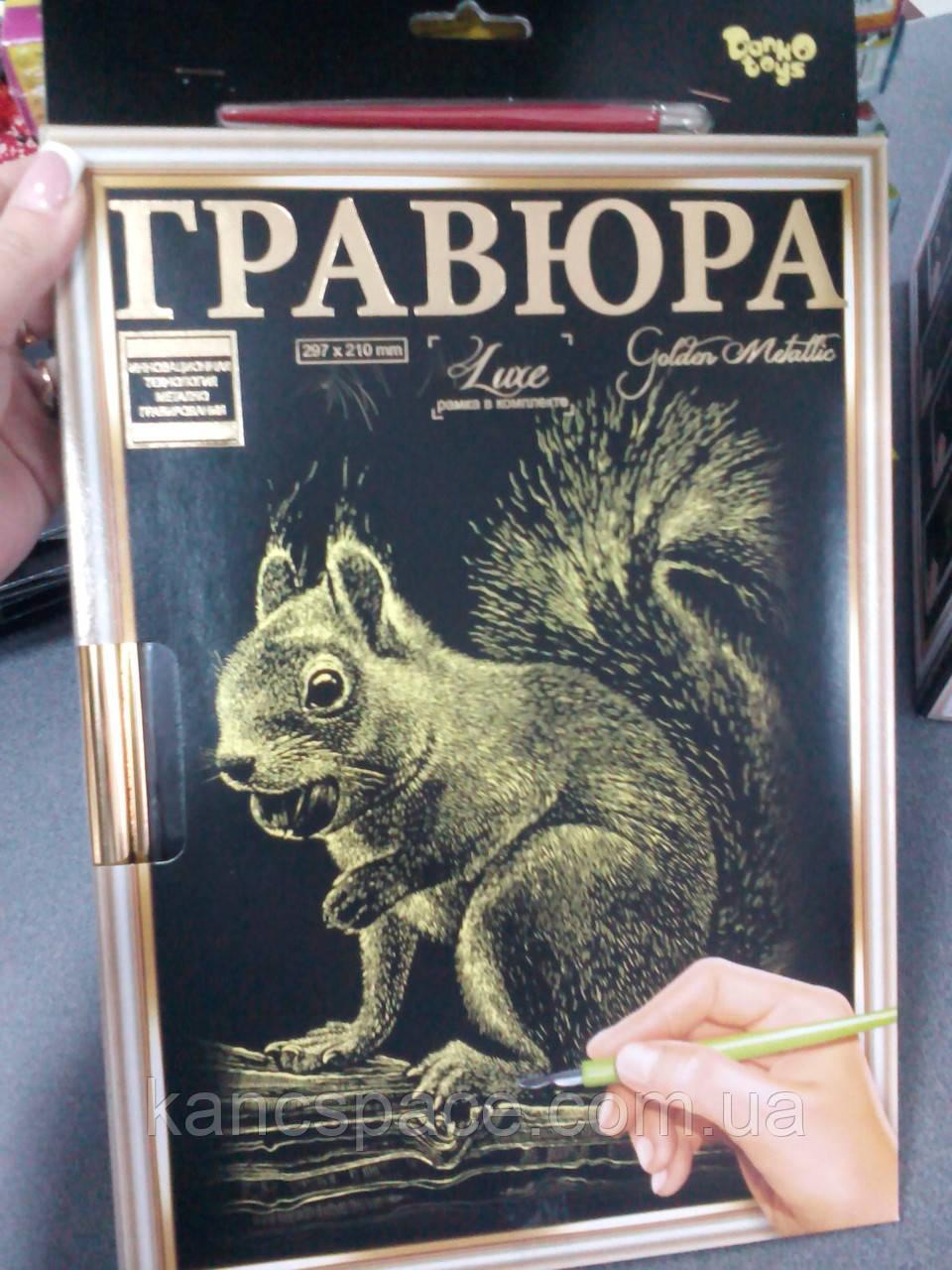 """Данко-Тойс Набор для тв. """"Гравюра А4 с рамкой""""/белка"""