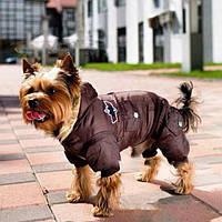 Амуниция, аксессуары и одежда для животных