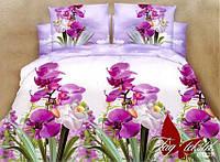 Комплект 3Д Цветы орхидеи, ранфорс (Хлопок)