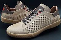 Кожаные мужские стильные кеды  Levis (model-609) бежевые (перфорация)