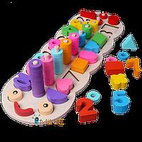 Деревянная развивающая пирамидка сортер Цвет, форма, счёт Candywood Монтессори, фото 1