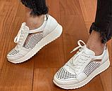 Жіночі кросівки Inshoes білі, фото 3