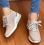 Жіночі кросівки Inshoes пудрові, фото 2