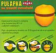 Ловушка Rapax от плодовых (фруктовых) мошек, фото 5
