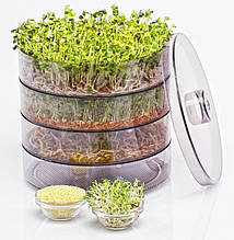 Пророщувач зерна та насіння ProVita (проращиватель микрозелени)