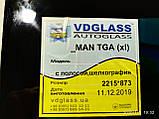 Лобовое стекло MAN TGX 26.440 низкий, кабина XLX, триплекс, фото 4