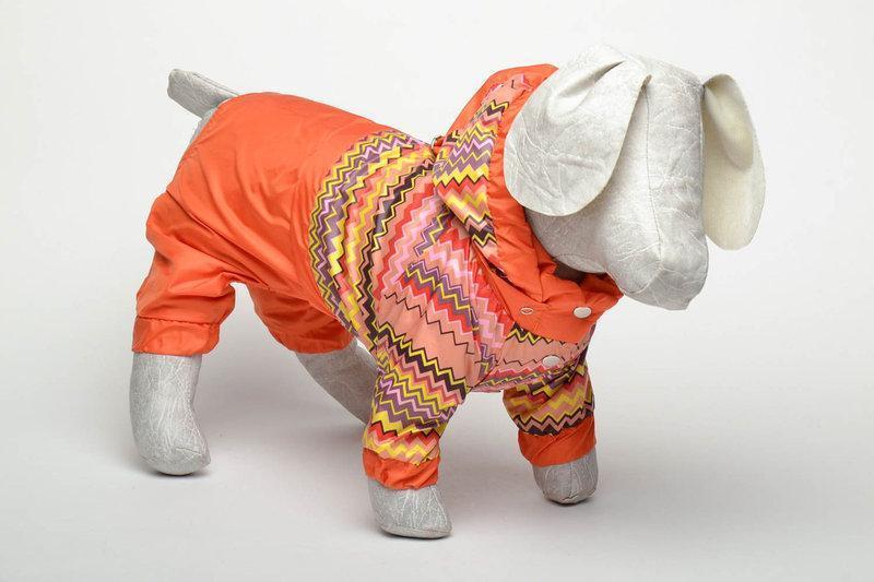 Комбинезон-дождевик  для собак Орнамент 38*60 мопс 2