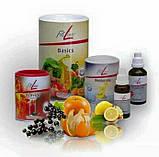 FitLine Optimal Set Витаминный комплекс питание оптимальный сет, фото 2