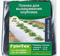 Плівка для полуниці (1,2х10м) чорно-біла