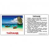 Набір 40 карток Домана Вундеркінд з пелюшок Країни міні, фото 3