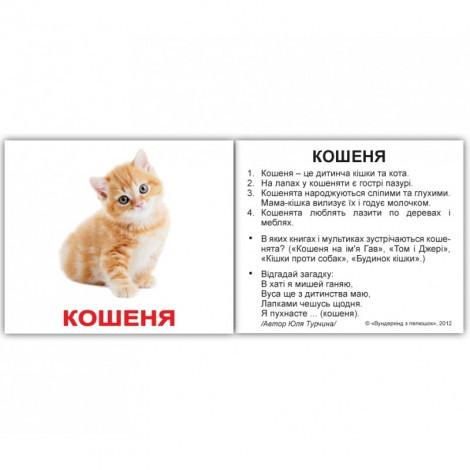 Набір 40 карток Домана Вундеркінд з пелюшок Домашні тварини українсько-англійські міні