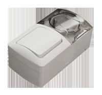 Выключатель одноклавишный с розеткой с з/к EVA EL-BI