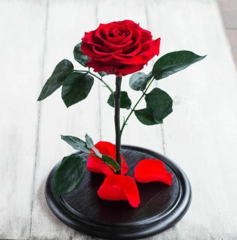 Роза в колбі з LED підсвічуванням Маленька - Червона