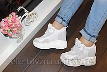 Снікерси кросівки жіночі білі з сірими на танкетці Т293