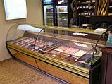 Витрина холодильная COLD NEVADA W-10 SGS, фото 2
