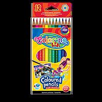 Карандаши цветные акварельные шестигранные 12 цветов, Colorino