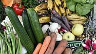 Продаж застарілих та маючих непривабливий вигляд продуктів харчування зі знижкою 80% запобігають потраплянню на сміттєзвалища близько 2000 тонн харчових відходів в рік - досвід Німеччини