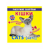 Розумні картки Кішки 12 карток (F00020496)