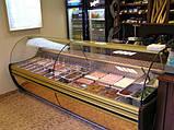 Витрина холодильная COLD NEVADA W-24 SGSP, фото 2