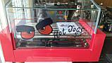 Гриль роликовый со стеклом FROSTY WY-005, фото 4