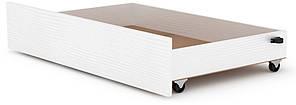 Ящик выдвижной для кроватей Классика и Модерн КОМПАНИТ нимфея альба (99.7х61.6х19 см)