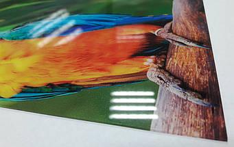 Кухонный фартук с кофейными зернами и цветами 62х205 см (под заказ любой размер), фото 3