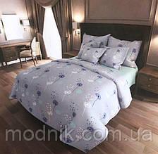 Евро комплект постельного белья с одуванчиками (светлый)