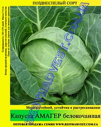 Насіння капусти Амагер 10 кг (мішок)
