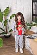 Детский спортивный костюм для девочки Colabear Турция 683000 Серый весенний осенний демисезонный, фото 2