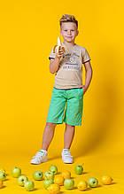 Детские шорты для мальчика Krytik Италия 89371 / KB / 00A Зеленый