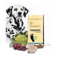 Сухой корм для молодых собак с повышеной активностью гиппоалергенный Trainer Natural Energy с лососем 18 кг.