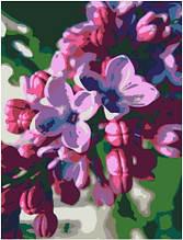 Картина по номерам Rosa Сирень