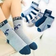 Демисезонные носки для мальчика