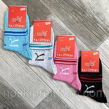 Носки женские демисезонные спортивные х/б Puma, 36-40 размер, ассорти, средние, 10005