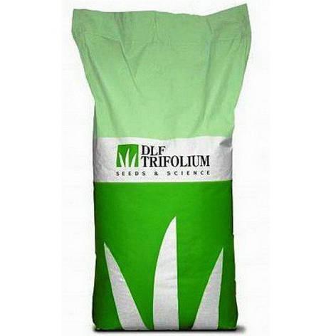 Газонная трава Робустика универсальная (DLF Trifolium) 20 кг, фото 2