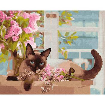 Картина раскраска по номерам на холсте - 40*50см BrushMe GX31654 Сиамская леди