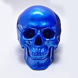 Череп декоративный синий в натуральную величину из гипса, фото 3