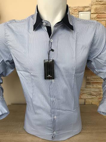 Сорочка довгий рукав Franko Manutti в полоску, фото 2