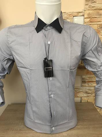Рубашка длинный рукав Franko Manutti, фото 2