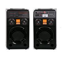 PA аудіо система колонки 284 | Професійні потужні акустичні колонки | Музичні колонки