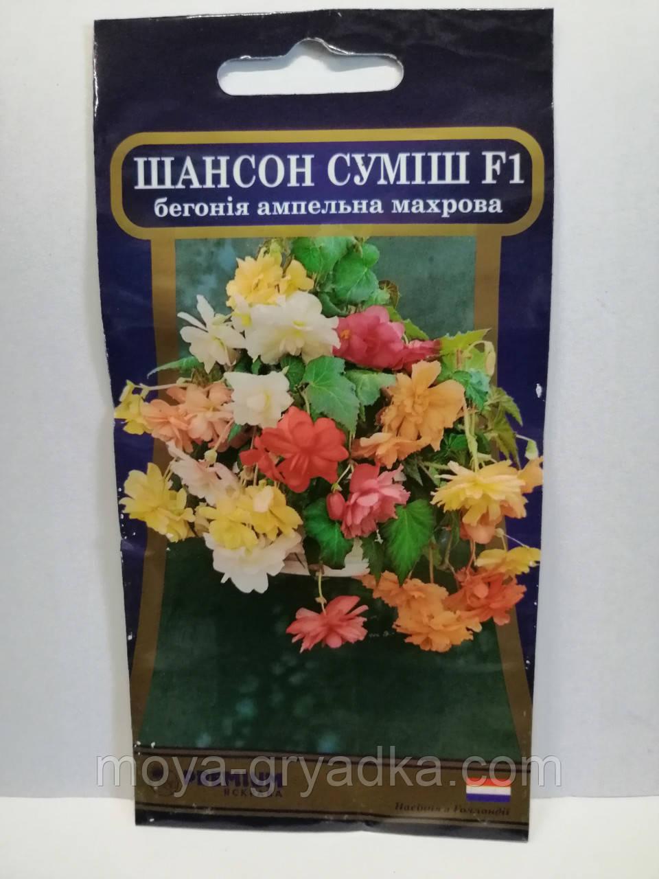 """Насіння квітів Бегонія Шансон Суміш F1 10нас ТМ""""Яскрава Преміум"""""""