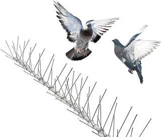 Шипи від птахів для підвіконня, даху, паркану, кондиціонера, реклами. 50 шипів довжиною 50 см