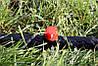 Крапельниця садова Presto-PS регульована 0-70 л/год, в упаковці - 10 шт. (AOD-0170), фото 3