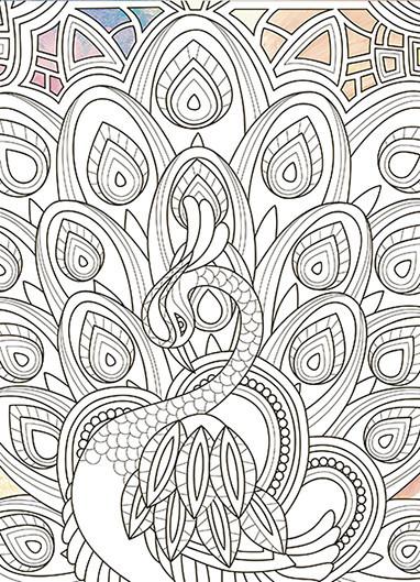 """Живопись по контуру. Дзен Антистресс раскраска. """"Грациозный павлин"""" (палитра янтарь) 18*25 DZ029"""