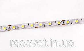 Світлодіодна LED стрічка гнучка 12V IP20 5050\60 Light