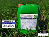Стимулятор роста на Пшеницу Ячмень Реаком Плюс Амино. Снятие стресса с растения 0,5-1,0 л/га L-Аминокислотами., фото 3