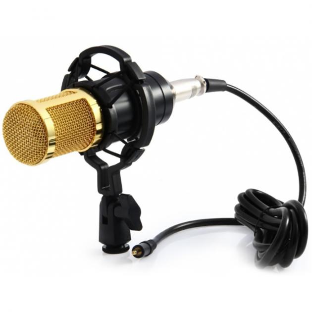 Студийный конденсаторный микрофон Music D.J. M-800  Plus со стойкой и ветрозащитой Black/Gold