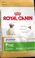 Сухой корм для щенков породы мопс в возрасте до 10 месяцев Royal Canin Pug Junior 500 гр.
