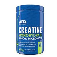 Креатин моногидрат ANS Performance 5000 мг микронизированный 300 г