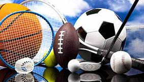 Спорт и увлечения